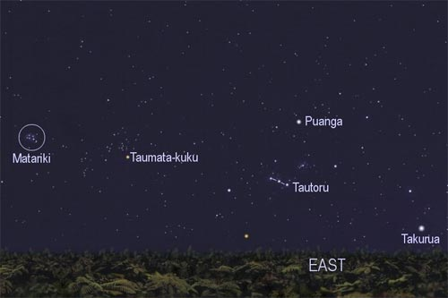 Matariki (Pleiades) and Tautoru (Orion's belt)